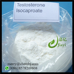 Anabolic Raw Steroid Hormone Powder Testosterone Isocaproate