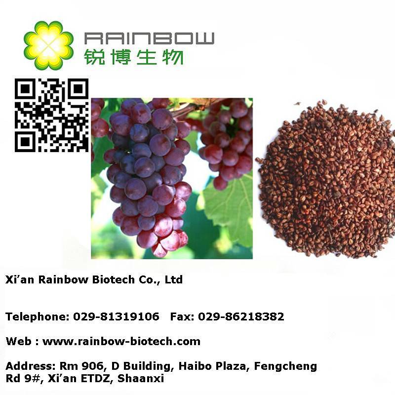 Water soluble grape seed extract 95%,grape seed extract powder 95%