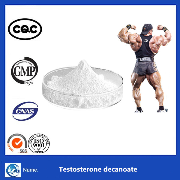 oil steroid 250mg/ml Testosterone Decanoate steroid powder or injectable liquid