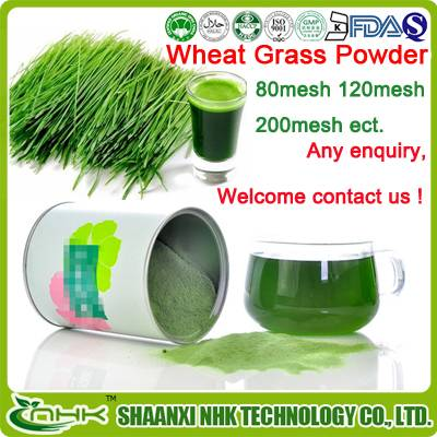 High quality water soluble wheat juice powder/ organic wheat grass powder