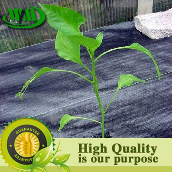 long lifespan pp weed barrier