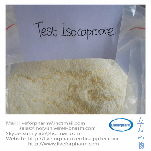 Testosterone Isocaproate Anabolic Steroid CAS 15262-86-9