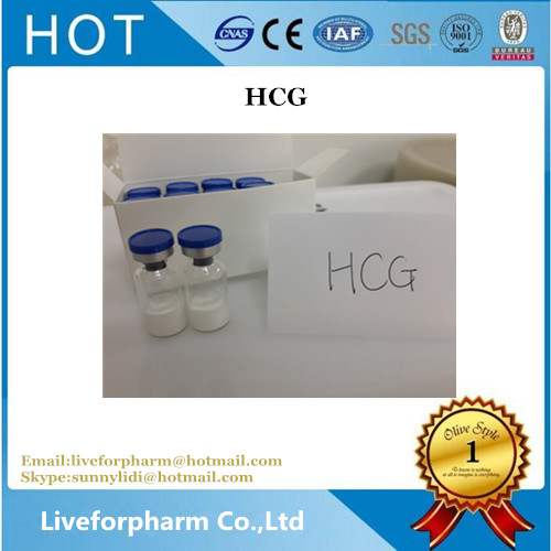 HCG Human Growth Hormone 5000iu/vial