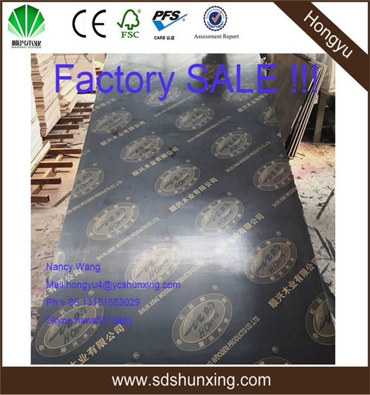 4x8 veneer shuttering plywood eucalyptus  core
