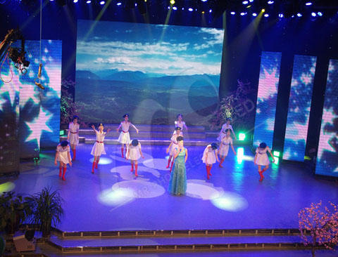 Shenzhen Mary Indoor Stage LED Display