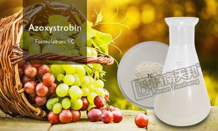 Fungicide Azoxystrobin 98tc 250g/l Sc