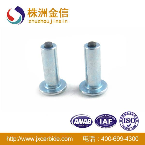Excellent Quality Hot Sales Carbide Winter Antislip Studs