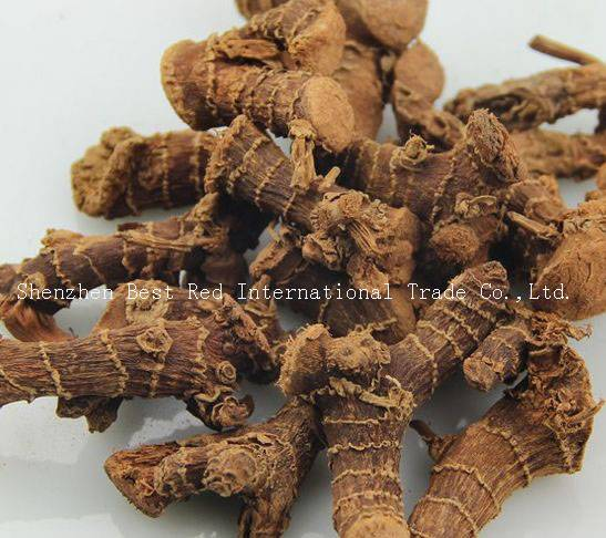 China galangal root dry & clean