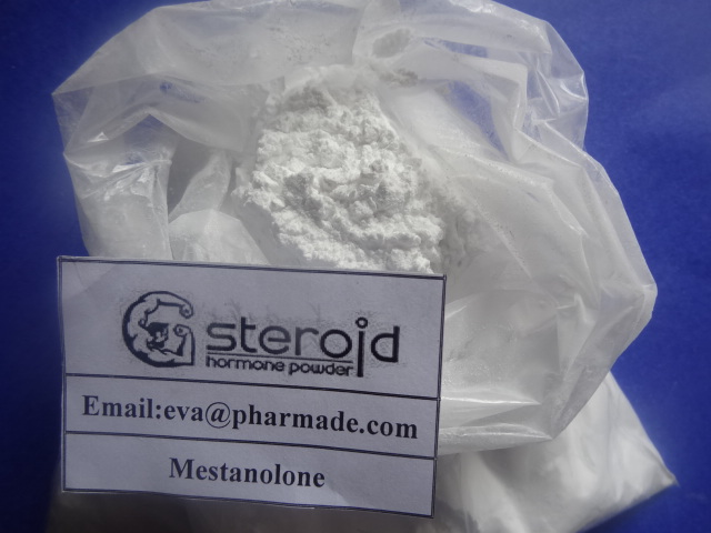 Mesterolone Testosterone Steroid Hormones Super discreet shipping by privateraws