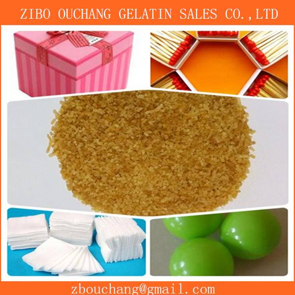 techincal gelatin