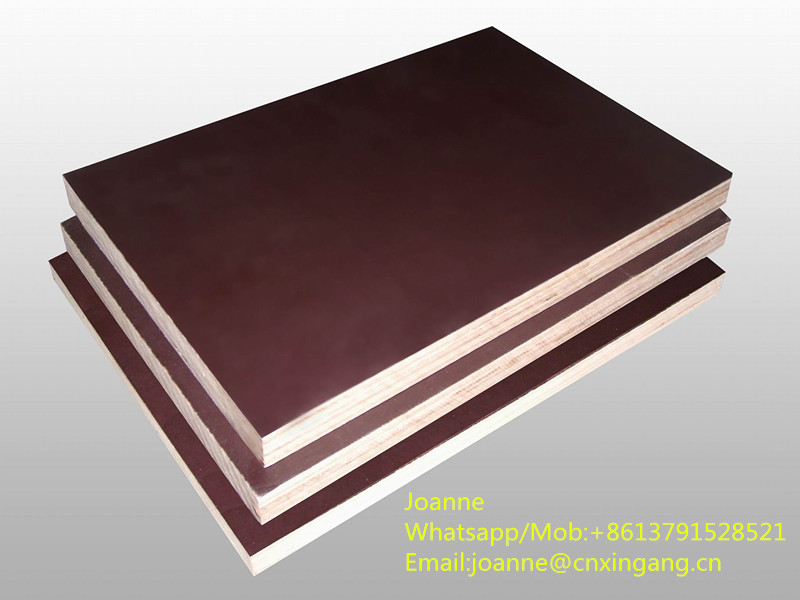 brown film faced plywood from XINGANG group since 1993