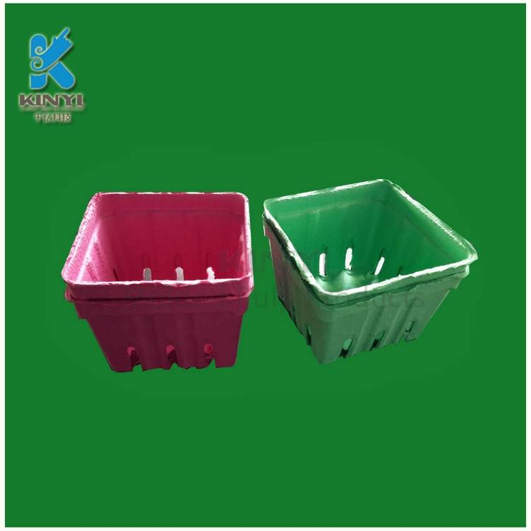 Eco-friendly biodegradable fruit packaging, bagasse pulp mold tray