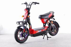 electric scooter/ electric motorcycles