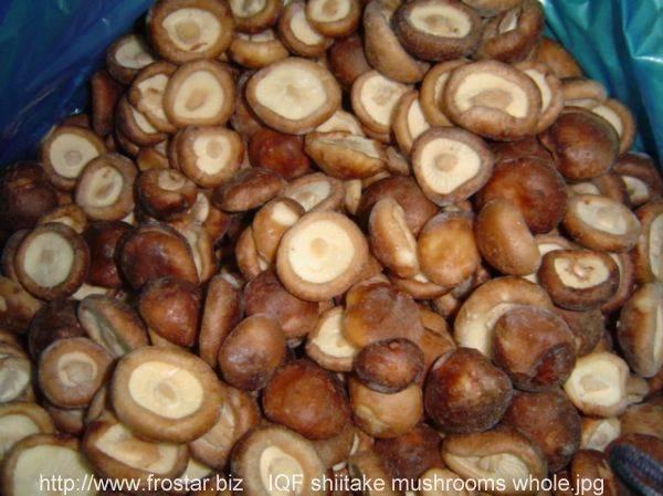 IQF shiitake mushroom, frozen shiitake mushrooms