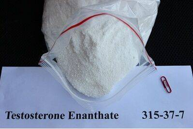 High quality 99% Testosterone Enanthate hormone powders