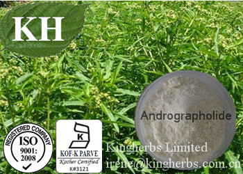 Common Andrographis Herb Extract;Andrographolide10%-98% by HPLC