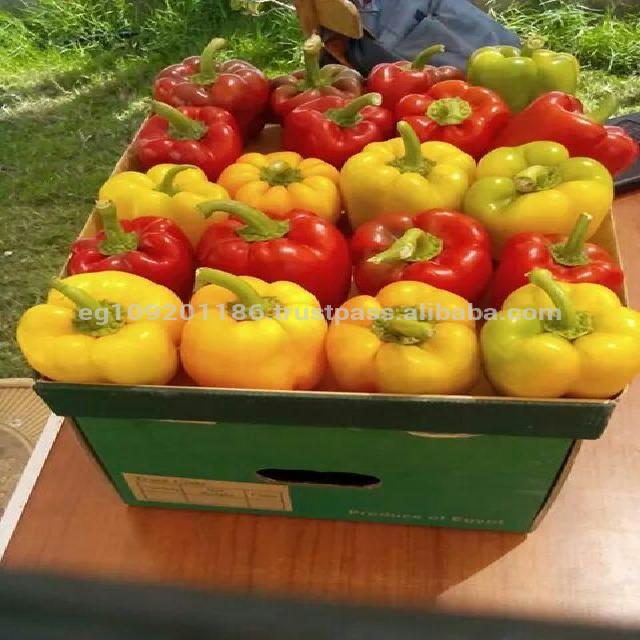 Peppers& Capsicums Red and yellow