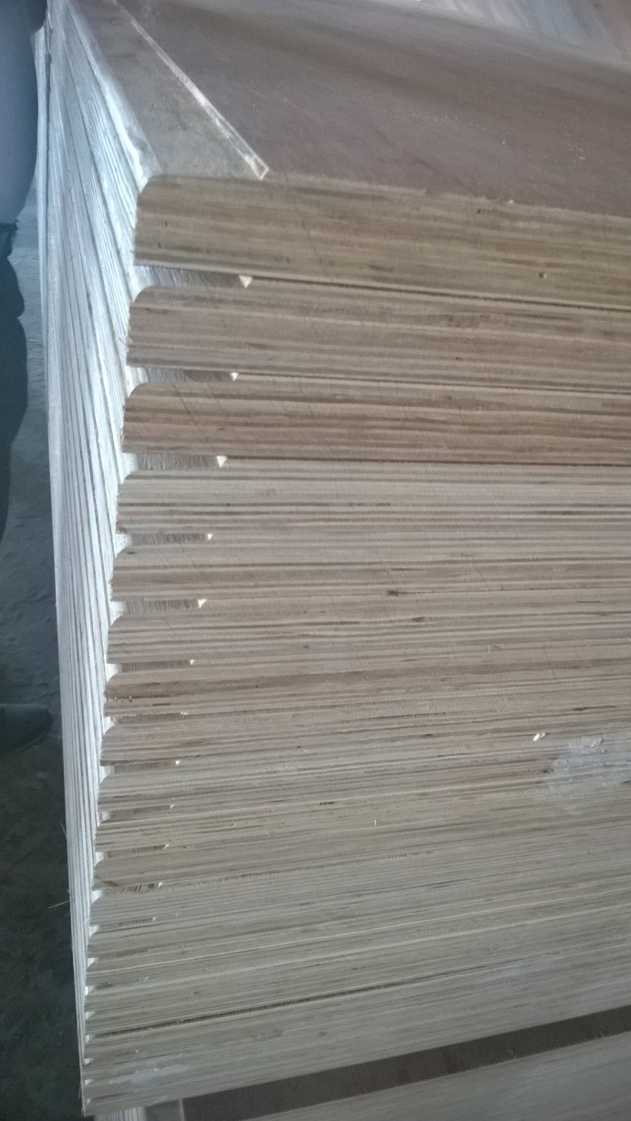 4x8 high qualtity plywood used for container floor