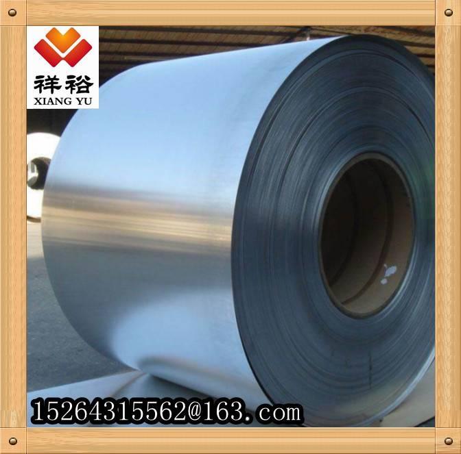 Galvanized Steel Coil/GI