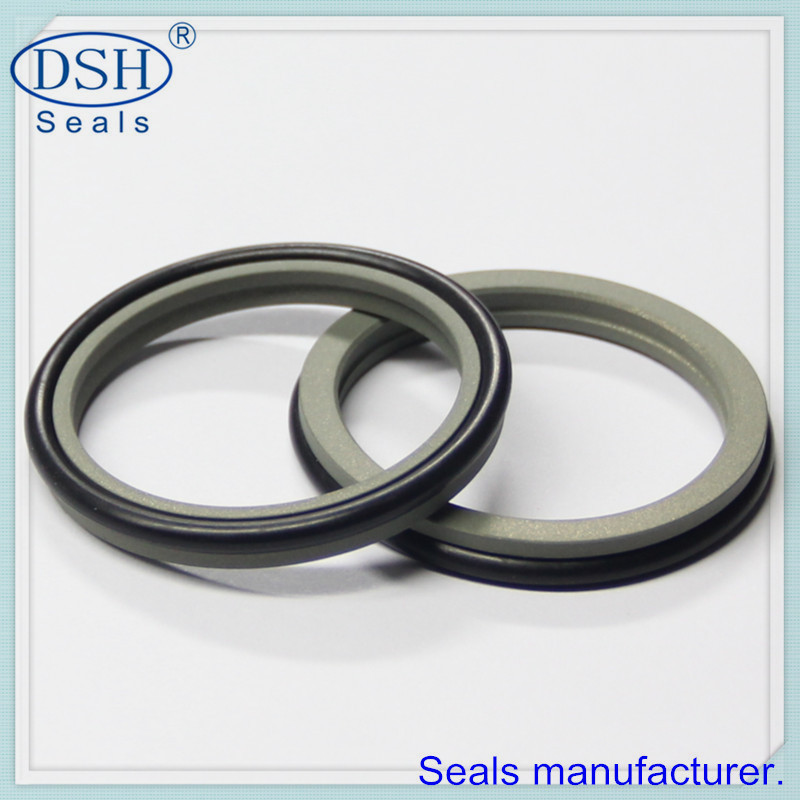 Good quality NBR Dust wiper seal DSZ