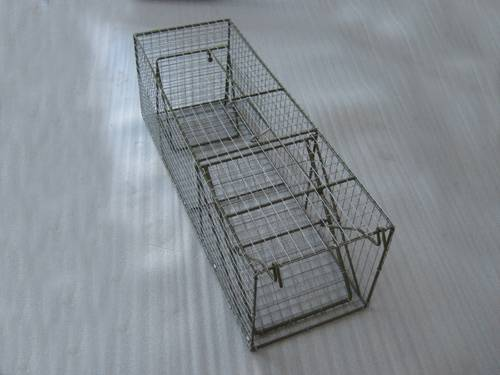 Live Animal Trap Different sizes For Sale