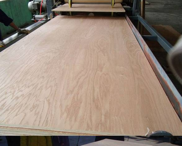 China plywood from manufacturer