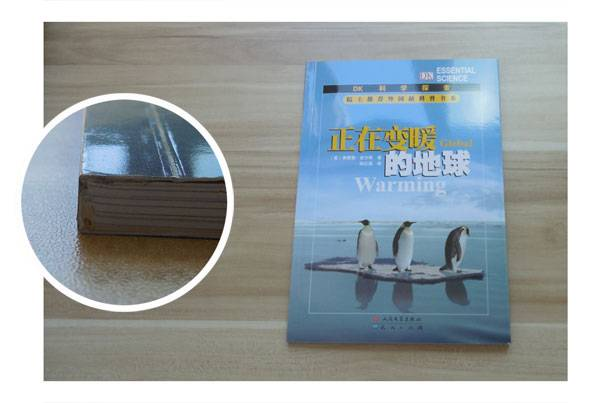 Top Quality custom Paper Cover Book Printing