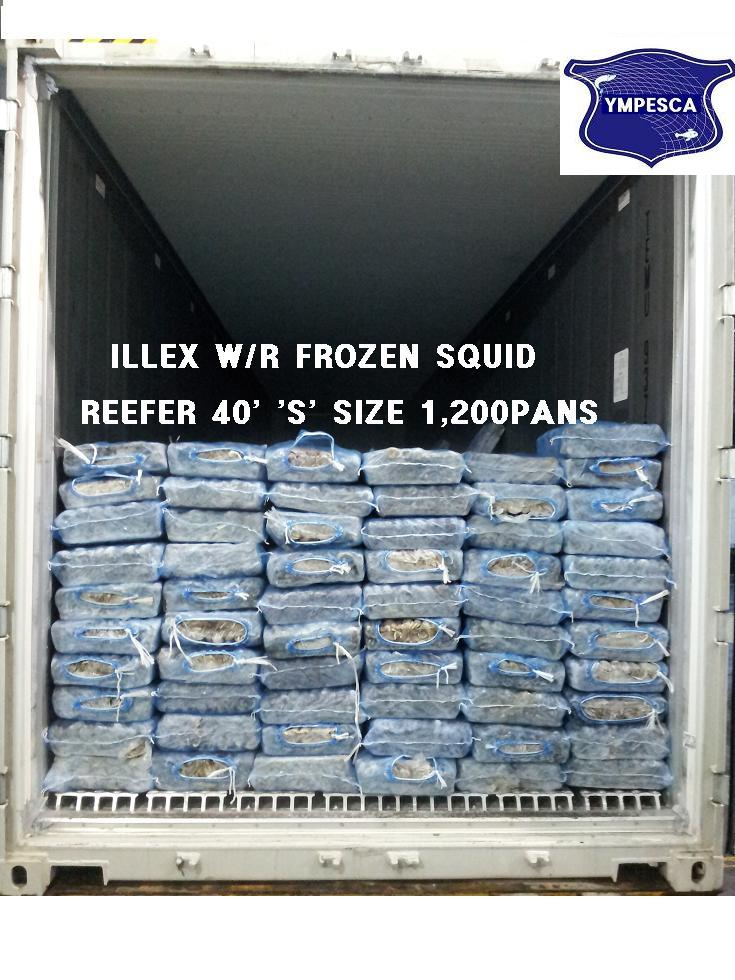 Frozen squid bait product