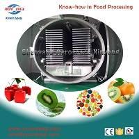energy saving freeze dryer