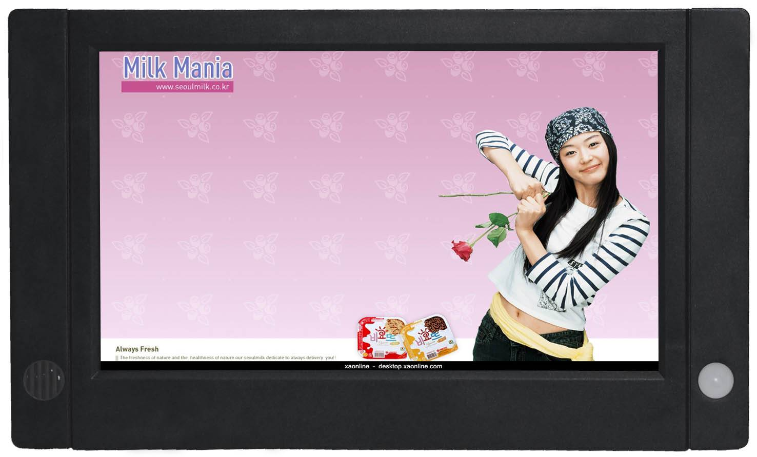 LCD Motion Sensor Advertising Screens