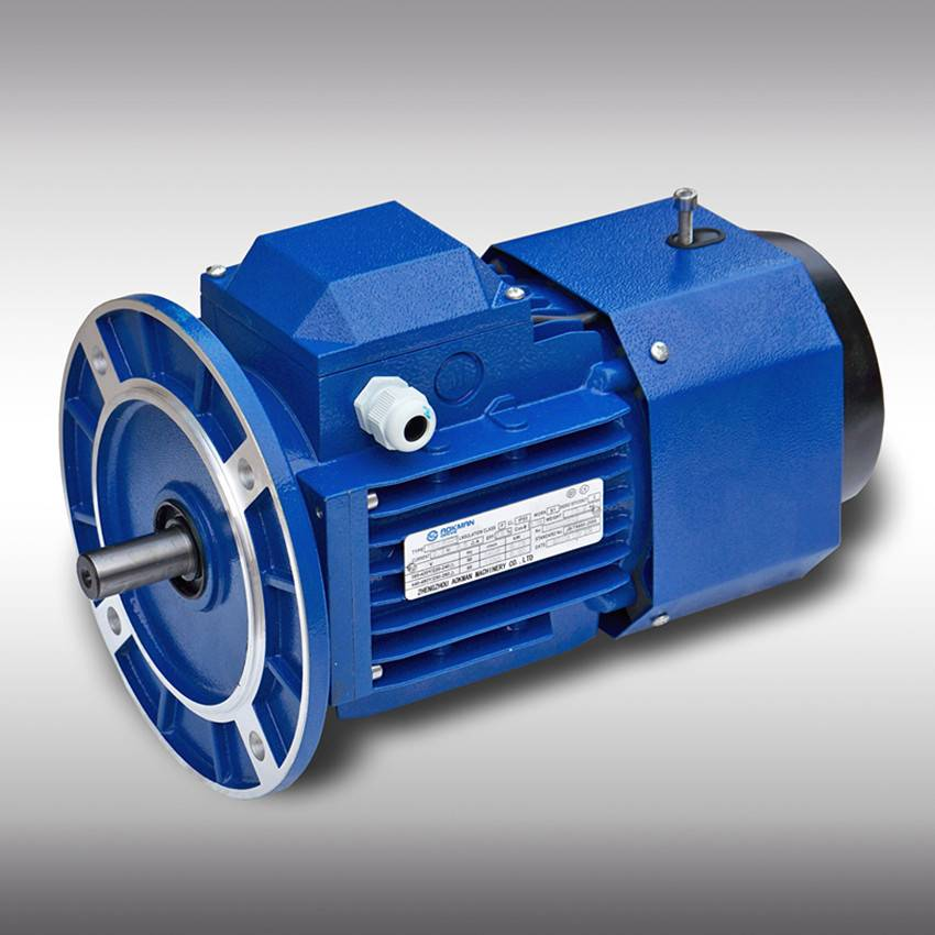 Hot Selling AC Motor with Brake