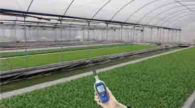 Mini portable temperature and humidity meter price handheld MT-903