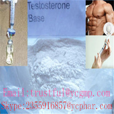 muscle building of Nandrolone cypionate for male enhancer
