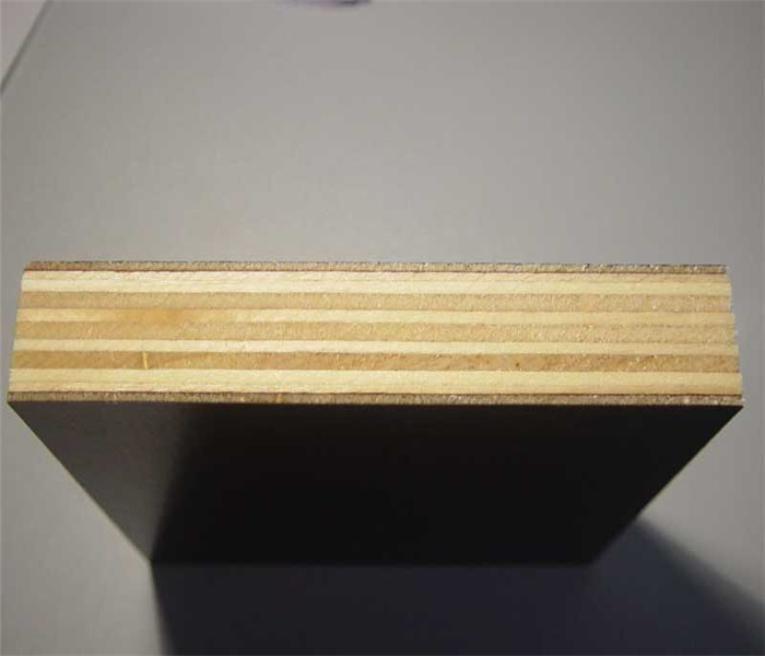 Cheap Price for Birch Brown Film Faced Plywood
