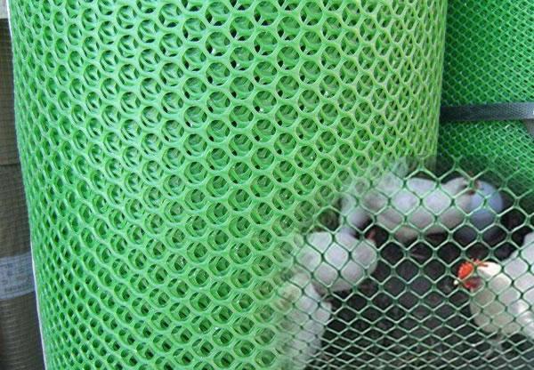 Plastic Poultry Fencing Net
