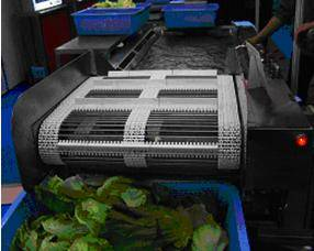 OTHER FRUIT/VEGETABLE PROCESS PLANT/MACHINERY