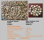 Palmadex Raw Cashew Nut