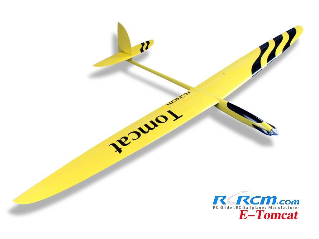 Tomcat-full composite rc glider of rcrcm