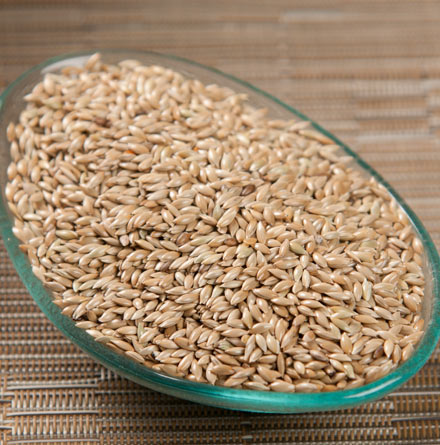 Coriander Seeds, Canary Seeds, Chia Seeds, Cumin Seeds, Rapeseeds, Sunflower Seeds