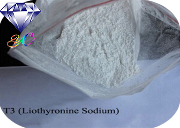 55-06-1 Body Building Raw Material Anabolic Steroid Powder Sodium L-Triiodothyronine(T3) for Muscle