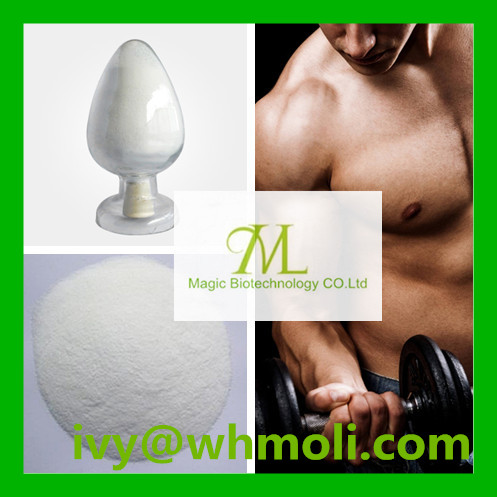 GMP Standard Steroid Powder Primonolane Methenolone Acetate for Muscle Building
