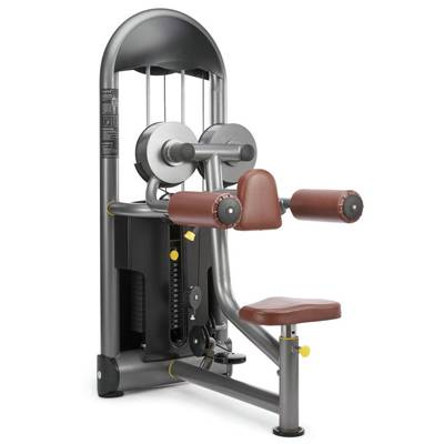 Seated Lateral Raise gym equipment / fitness equipment