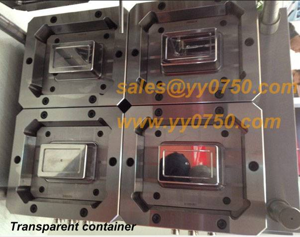 Food standard transparent container plastic molds
