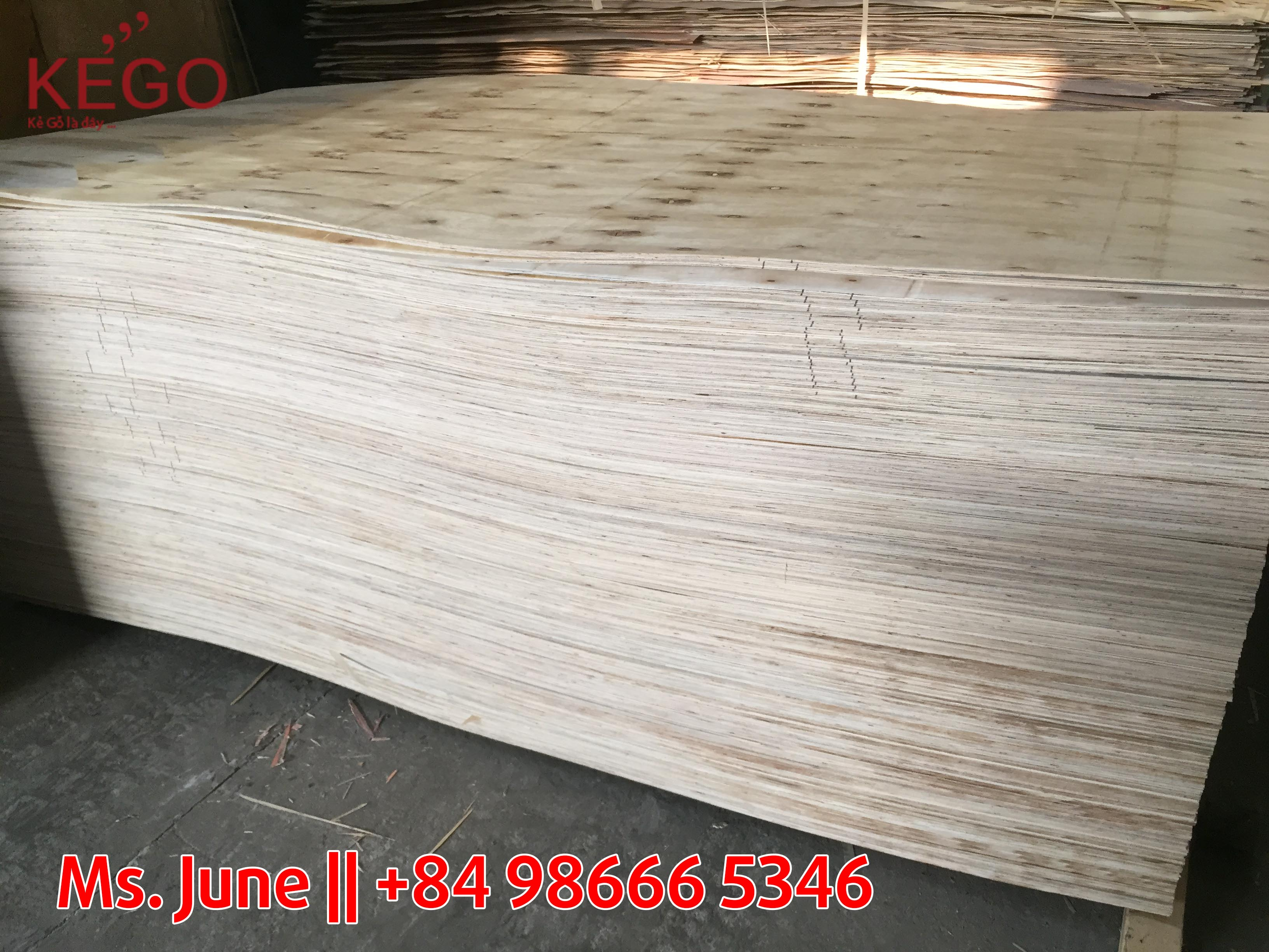 BEST QUALITY PACKING PLYWOOD FROM VIETNAM (8.5 X 1220 X 2440)