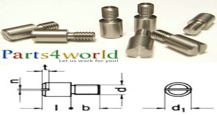 Custom Precision 303 / 316 Stainless Steel DIN 927 Slotted Round Head Shoulder Screw Bolts