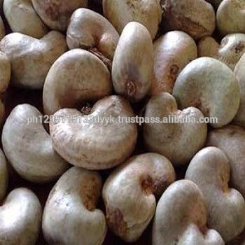 Raw Cashew Nuts Wholesale / Raw Cashew Nuts in Shell / Raw Cashew Nut for Sale