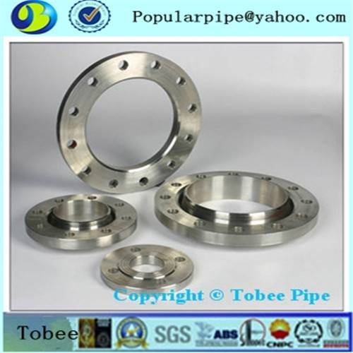 Hebei Stainless steel flange