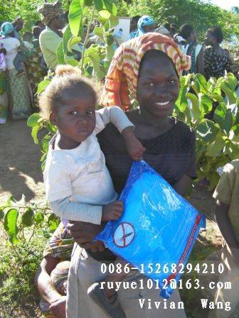 insecticide mosquito net export to Africa/bed canopy
