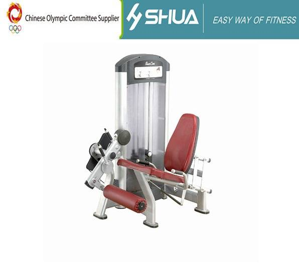 GYM Equipment/Leg Extension Fitness Equipment