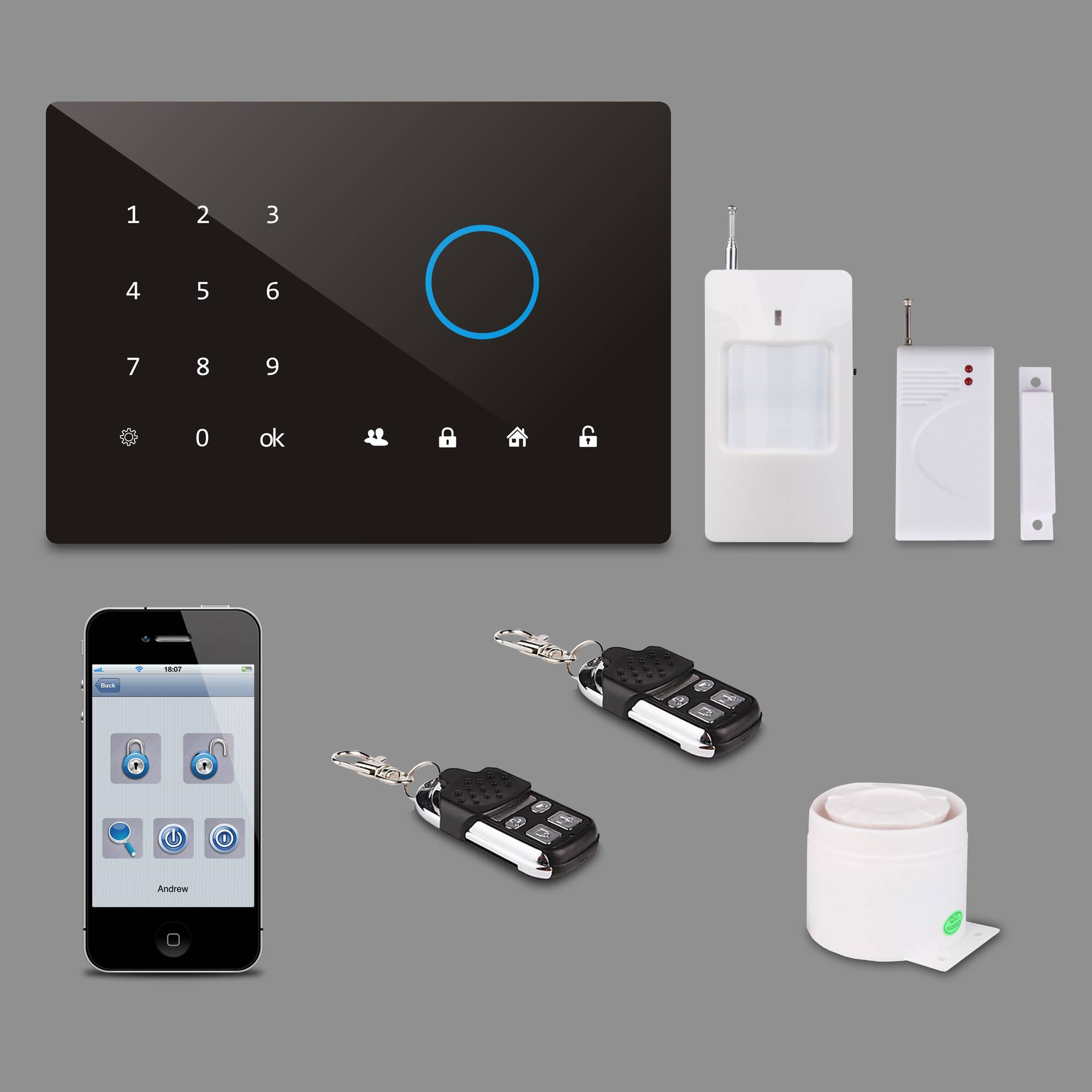 254s Delay Alarm Time Battery Powered Alarm Systems PH-G2